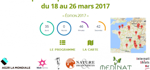 journee-nationale-shiatsu-do-in.fr--site-2017